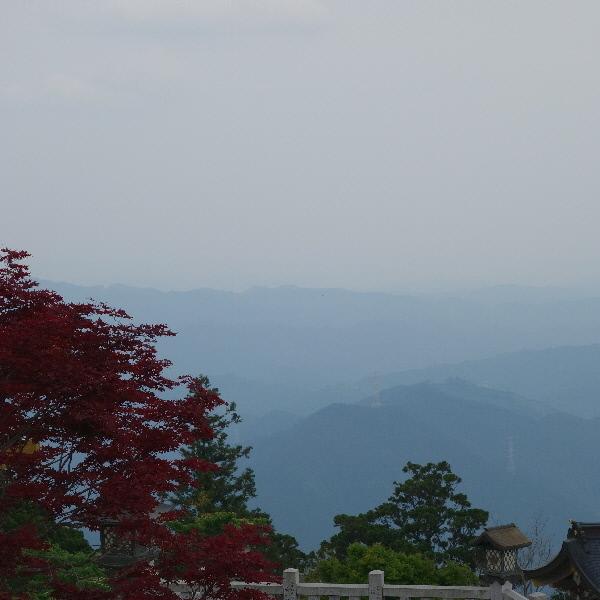 秋葉神社より