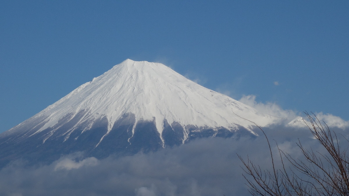 道の駅 富士より